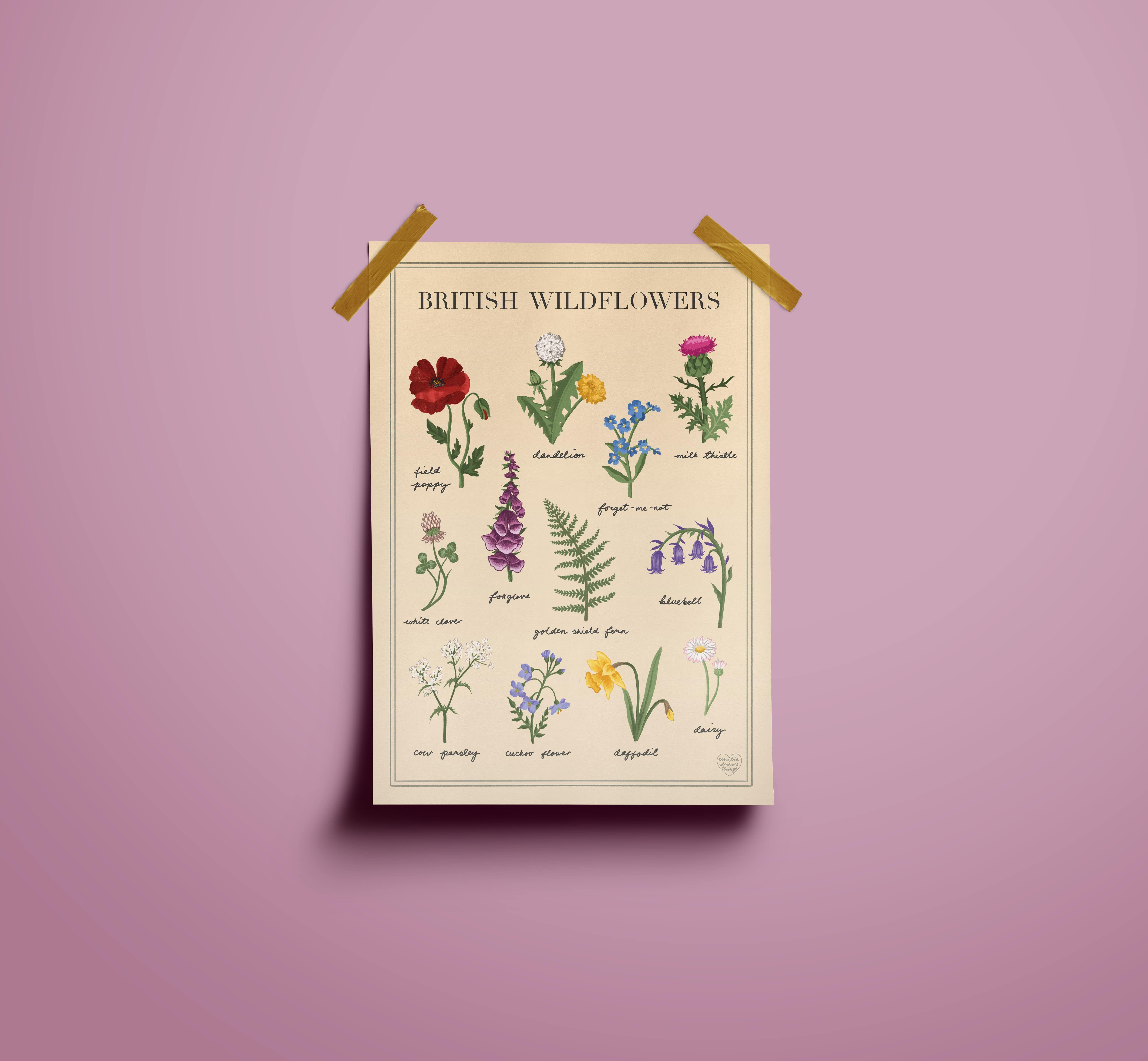 British Wildflowers Illustrated Art Print A3 A4 | Vintage Cottagecore Wall Decor